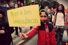 Marcha-contra-McDonalds-Monsanto-Transgenicos079-2