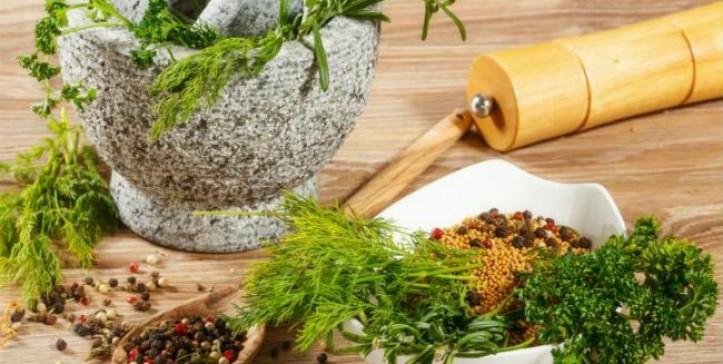 Importantes plantas medicinales de México - El Quinto Poder